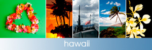iconhawaii